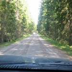 Soon there, driving through the Swedish wilderness!