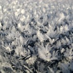 Frost on a car roof.
