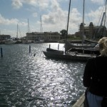 Still walking around, now checking out the boats in the docks.